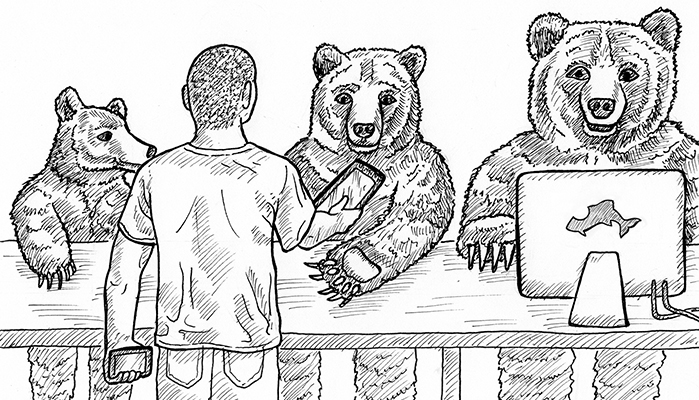 Illustration of three bears, one on desktop, one on tablet, one on mobile, all with own story