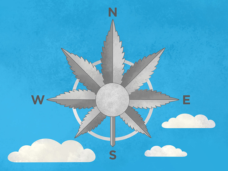 Infographic illustration artwork for Garvey Schubert Barer attorneys, Cannabis law firm